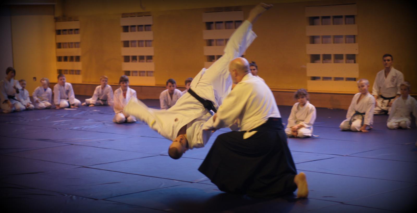 """Nabór i zapisy do """"Europejskiej Federacji Yoshinkan Aikido"""""""